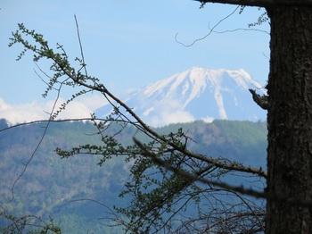 高谷山手前で見えた富士山.JPG